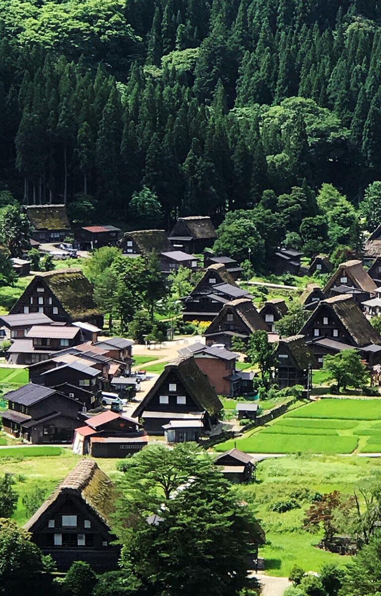石川県は自然もいっぱい